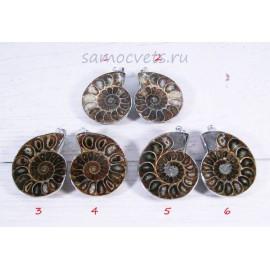 Аммонитовый Кулон 35х45 мм Сокровища океана - 1